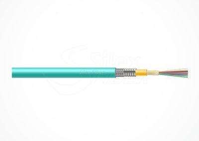 KPSSM-2-12fo-SilexFiber-v05